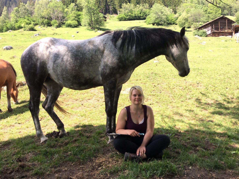 Einzelcoaching mit Pferd, Erfahrungsbericht von Nicole